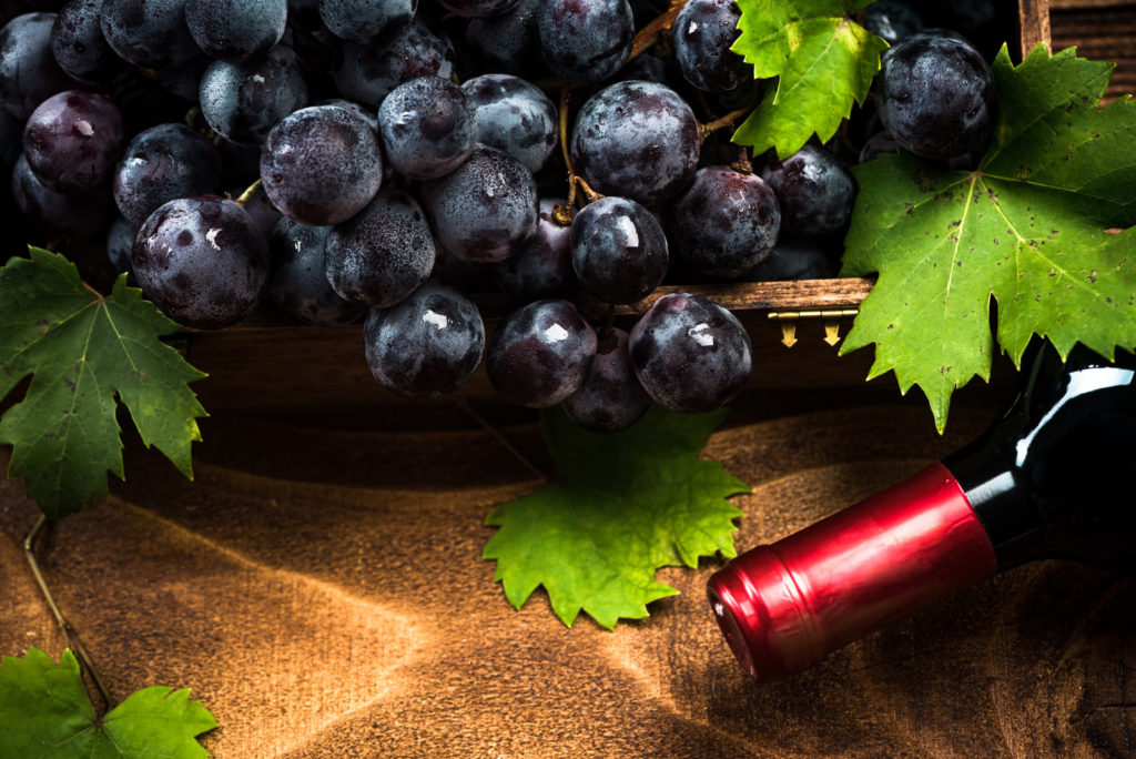 Freshly harvested grapes and red wine.