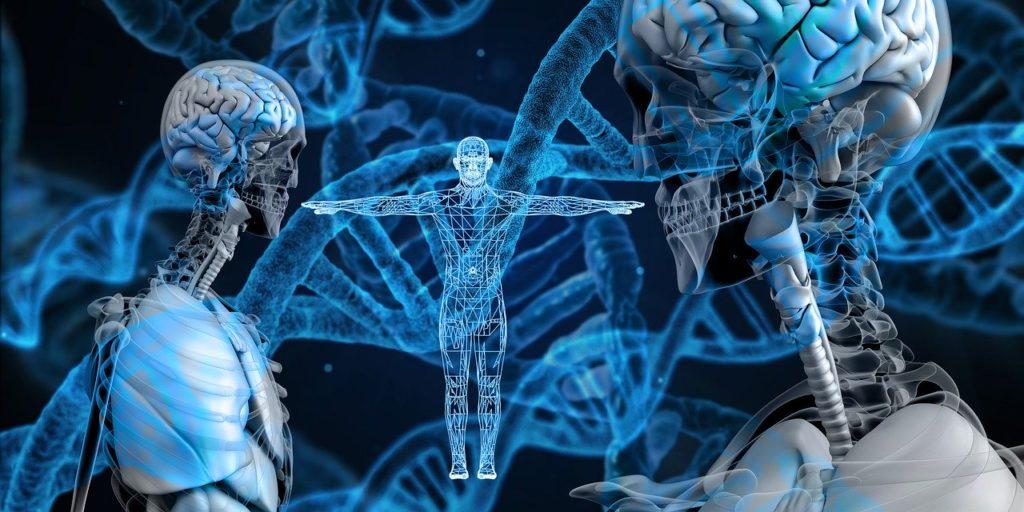 Istraživanje i razvoj, Gentski materijali, DNA