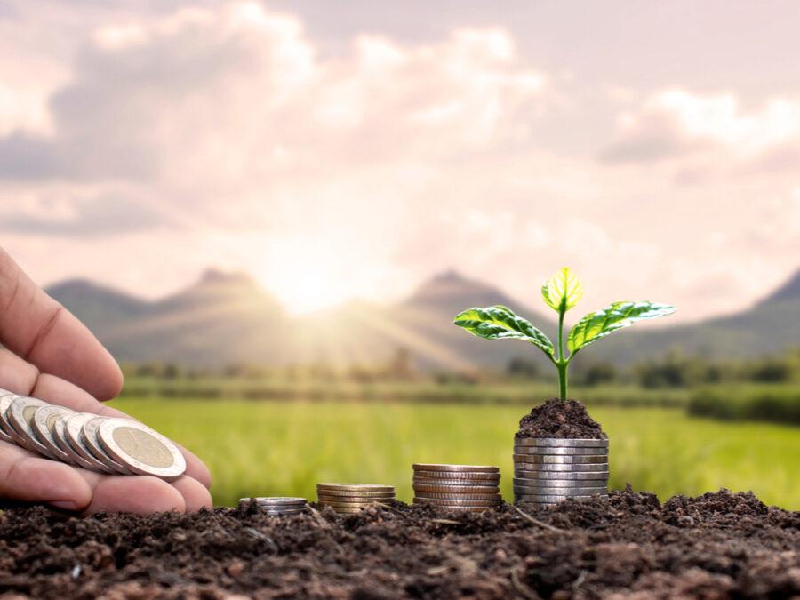 Potopra poljoprivrednicima - kovanice eura iz kojih raste biljka