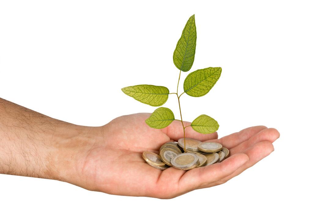 Plan objave natječaja iz programa ruralnog razvoja, biljka raste iz eura